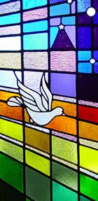 stained glass - dove